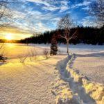2/9(土)市川市内積雪!十分にお気をつけください。気温も1度です…