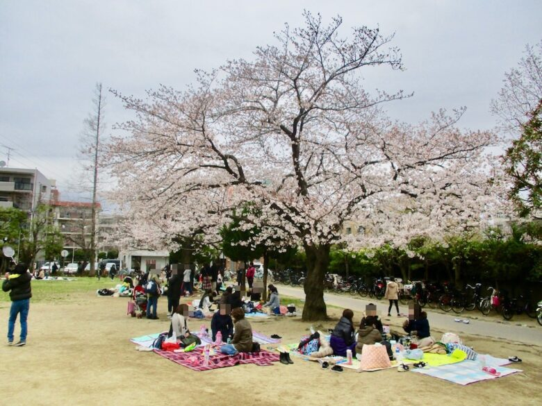 行徳駅前公園の桜の木の下でお花見をする人々